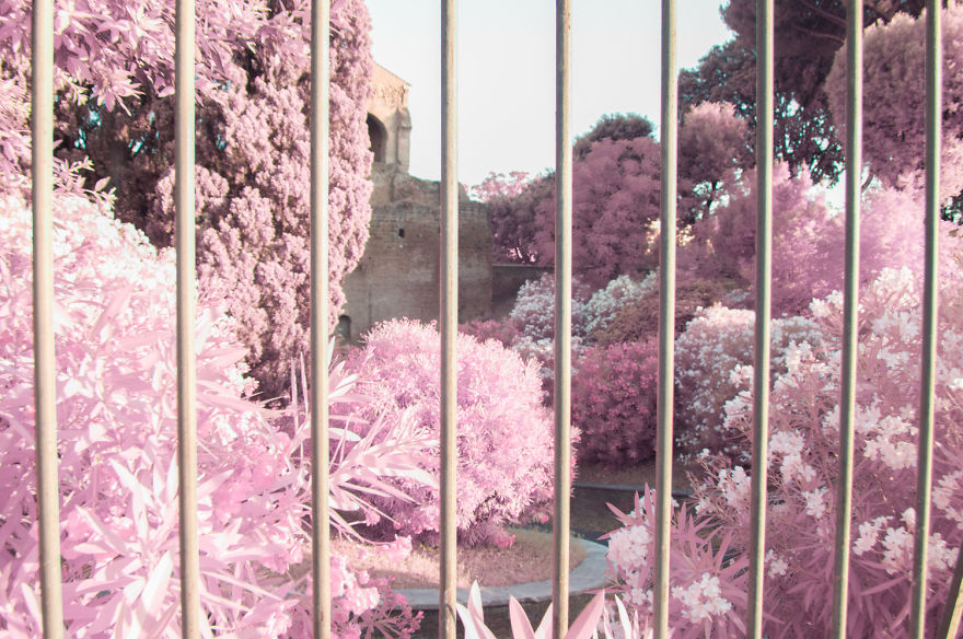 I-Photographed-Rome-in-infrared-579af9ad210ce__880